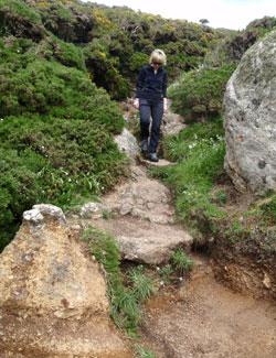 Terrain type coastal walk