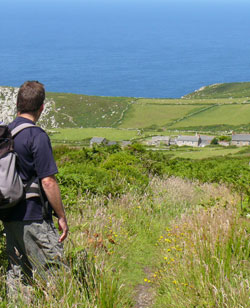 moorland Cornwall